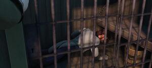 Hans imprisoned