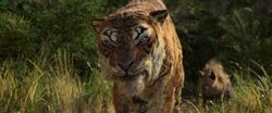 Shere Khan 2018 Confronting Mowgli