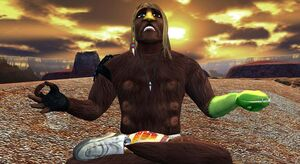 Xavier meditating