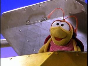 Bug (Elmo)