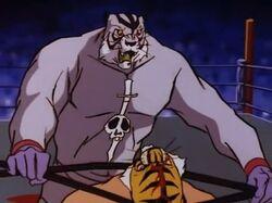 8 Grande Tigre Uomo Tigre