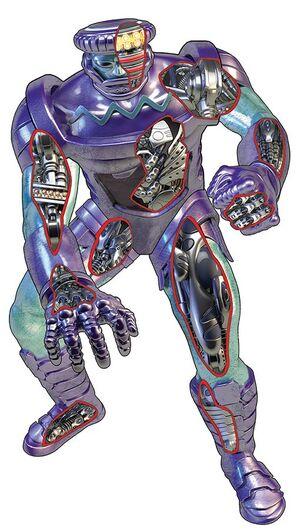 459 anatomy