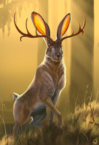 Jackalope-pictures-Are-Jackalopes-Real