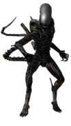 Xenomorph from alien isolation by frankaster1987-d8gmbmq