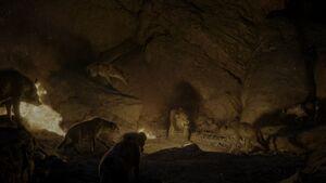 Lion King 2019 Screenshot 3135