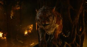 Shere Khan Provocations