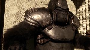 Grodd Armor