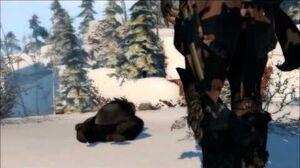 Assassin's Creed Liberation HD all assassinations