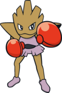 107Hitmonchan Dream