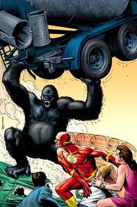 Gorilla Grodd 0004