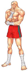 Street Fighter II Dash Art Sagat 1