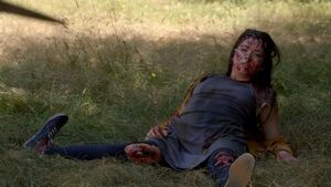 Hael-injured