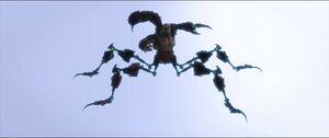 Scorpion splitting his legs