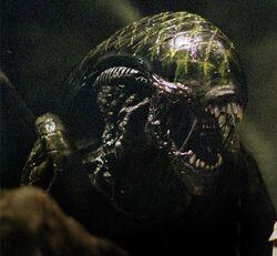 Aliengrid