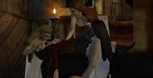 Brides of Dracula Van Helsing video game