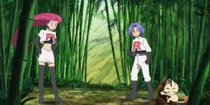 Team Rocket in the Forest (SM069)
