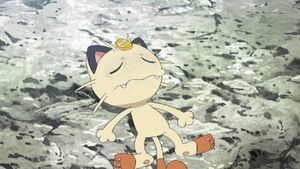 Meowth is Unconscious