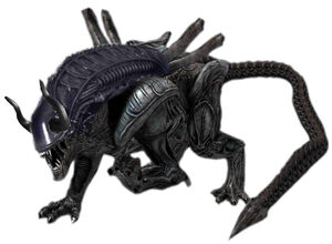 Bull alien by weylandyutanicorp-d6f2xd5