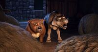 Thaddeus&Rufus7
