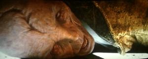 Snoke-1024x411