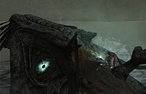 Shadow-of-the-Colossus-SOTC-Wallpaper-Hydrus-Sea-Dragon-18