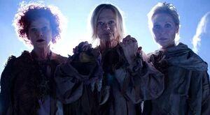 The Three Doyle Sisters