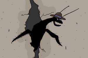 STB-Hat Beetle