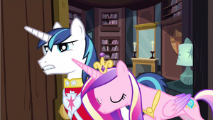 Princess Cadance affectionate S2E25