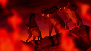 The lion king hyenas