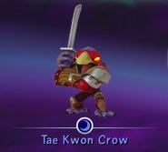 Normal Tae Kwon Crow