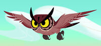 Owl Tangled