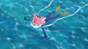 James Swim in Ocean