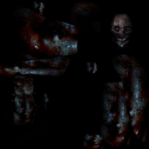 SCP1064