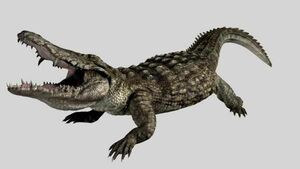 Crocodile 01 still