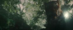 Shere Khan Sees Mowgli 2018