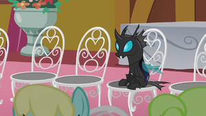 A changeling attending Cranky Doodle Donkey and Matilda's wedding in Ponyville