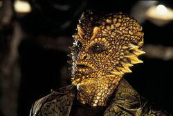 250px-Corn Face