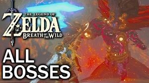 Zelda Breath of the Wild All Bosses