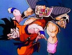 Goku vs. Daiz
