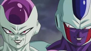 Freezer and Cooler