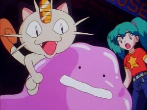 Meowth kidnapped Ditto