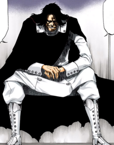484Yhwach full body
