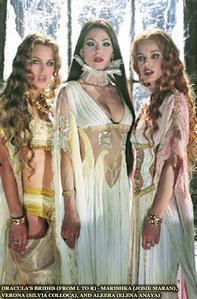 Brides of Dracula still