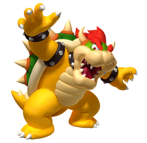 Bowser Play Nintendo