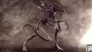Aliens warrior cg shot iii by locusta-d47fw4y