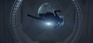 Magpie descending