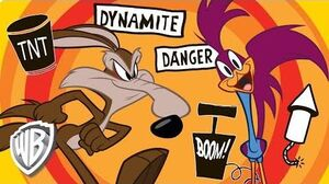 Looney Tunes Wile E Coyote & Roadrunner Compilation WB Kids