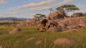 Madagascar2-disneyscreencaps.com-2708