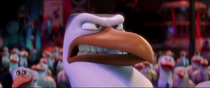 Storks Hunter Angry Stare