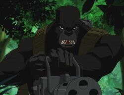 Monsieur Mallah (Young Justice)